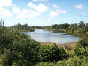 南大東島の大池(wikipediaより)