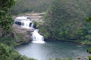西表島マリュウドの滝の写真(wikipediaより)