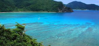 奄美大島へのフェリーの時刻表・料金表