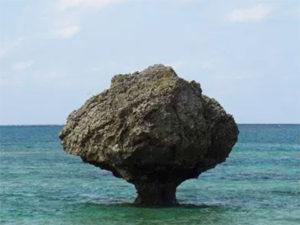 大神島の写真
