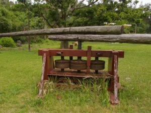 徳之島のサトウキビ圧搾機